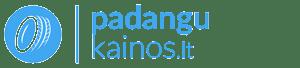 Padangų kainų palyginimo paslauga Lietuvoje